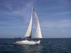 alquiler-veleros-valencia-ibiza-formentera-denia-oc500-001.jpg